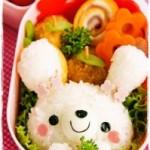 ☆人気お弁当ブロガーちっちさん・幼稚園お弁当1