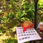 夏休み 木陰 宿題