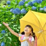 梅雨の季節に読みたい、雨の日が楽しくなる絵本
